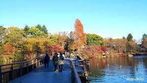 東京:夢寐以求的生活, 港元54萬就買倒喇!實回報5.7%